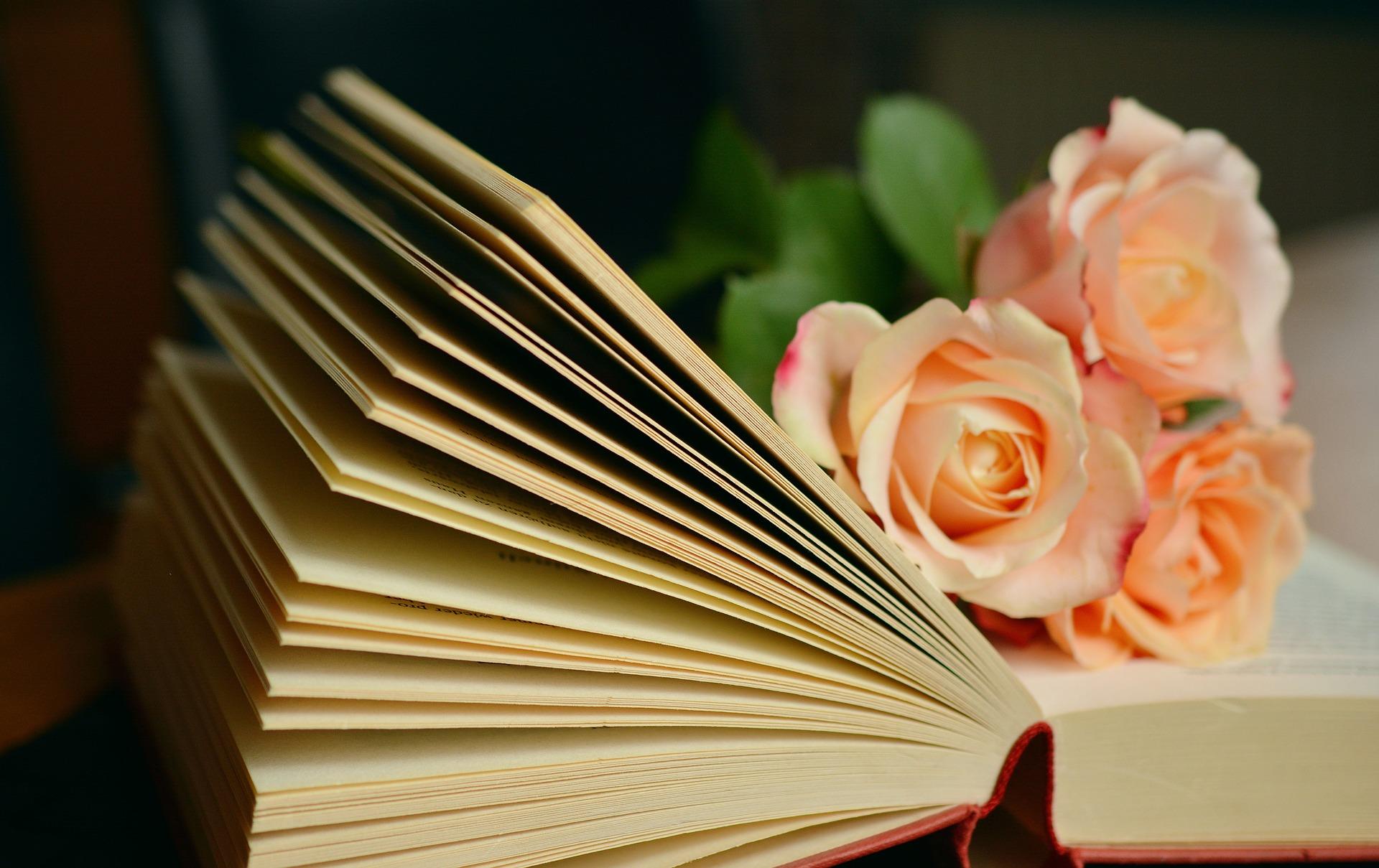 livre-ouvert-roses