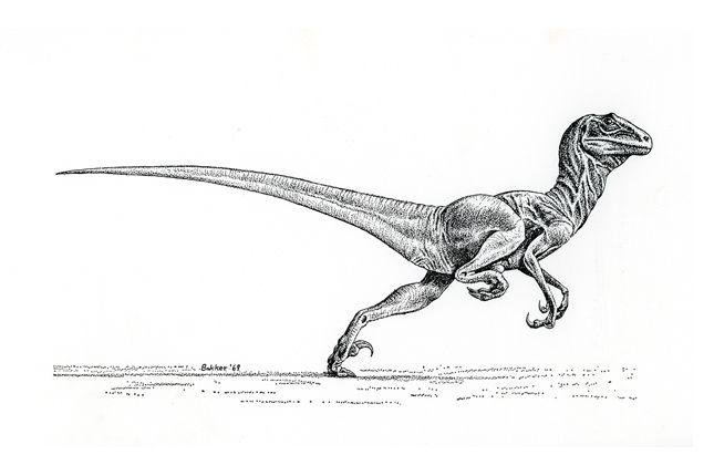 """Venez découvrir tous les secrets qui font la magie de """"Jurassic Park"""""""