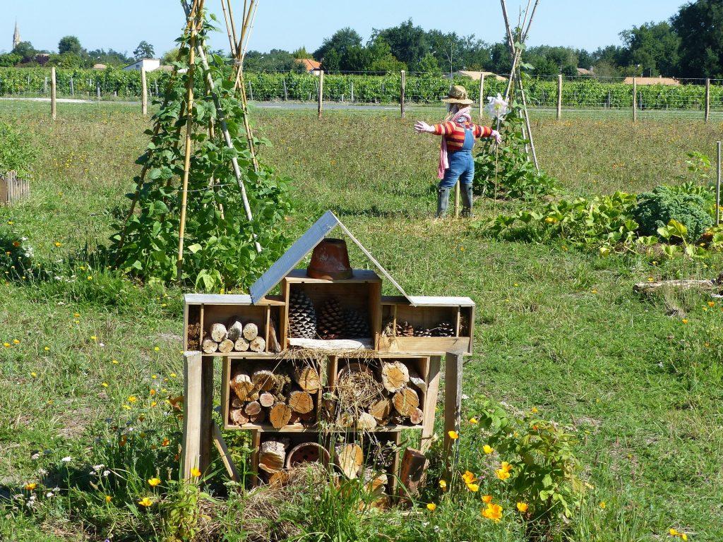 La permaculture, concrètement c'est quoi ?